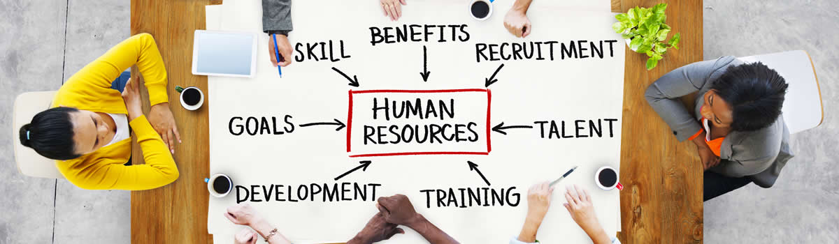 Developing organisational human resources
